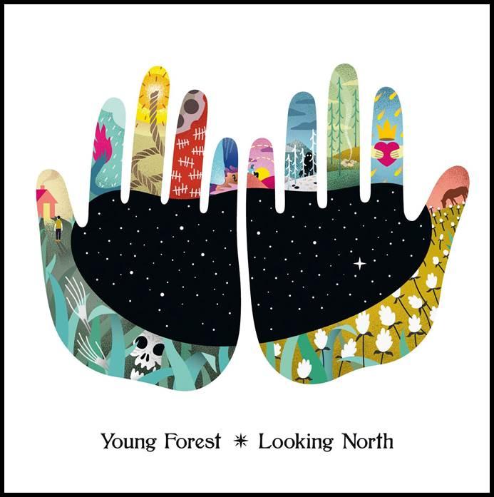 Young ForestlanzanLooking North, su nuevo álbum